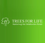 Forestry Investment - Trees for Life
