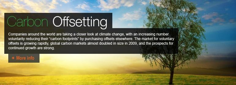 US Carbon Market